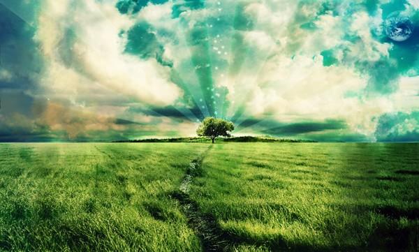 field_of_dreams_by_fi2_shift