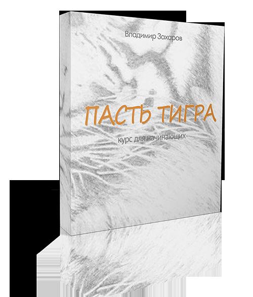 «Пасть Тигра: форма и формулы»