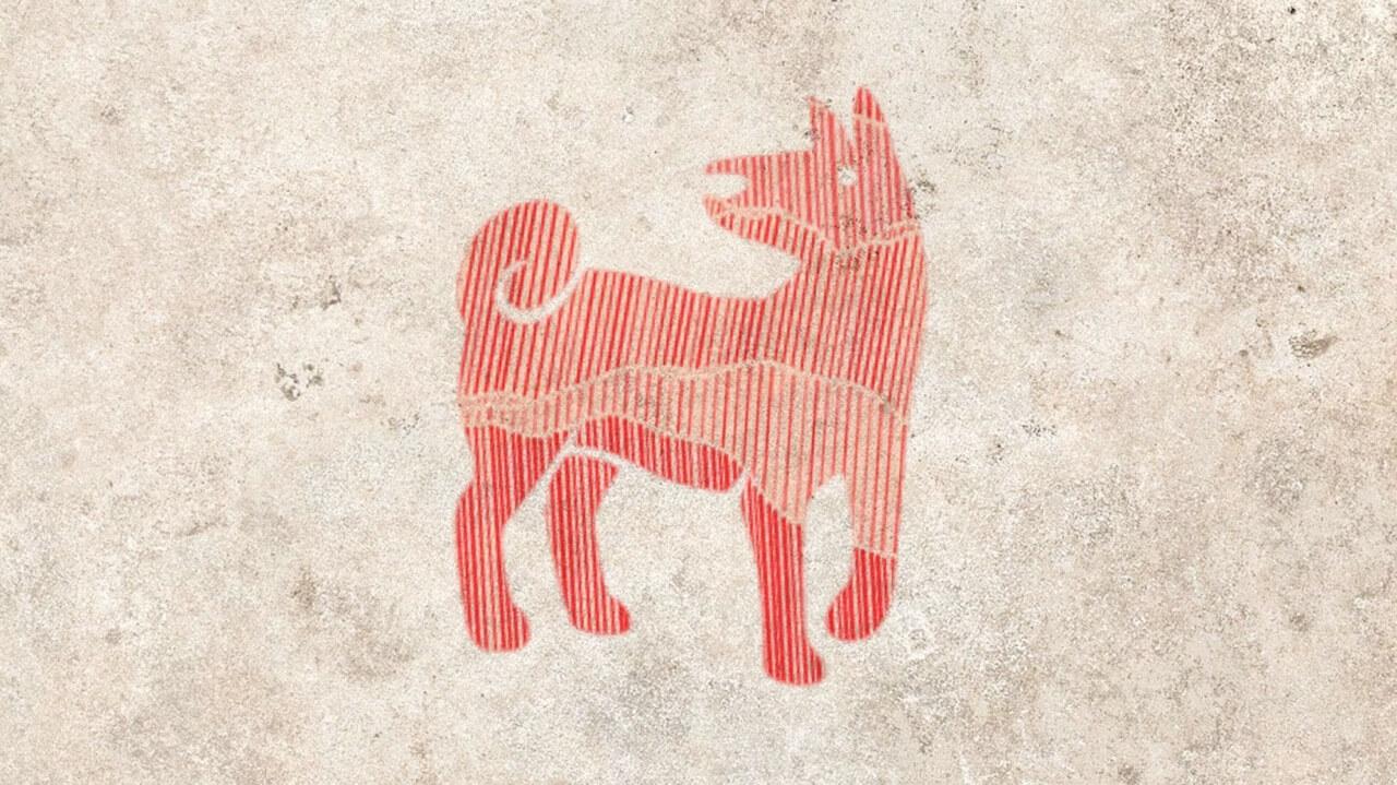 Собака 2019